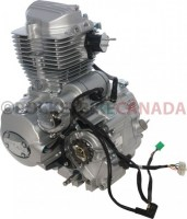 Complete_Engine_ _Vertical_150cc_Engine_Manual_Shift_Electric Kick_Start_1