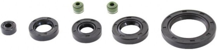 Oil_Seal_Kit_ _125cc_to_250cc_WY125_7pcs_Rubber_1