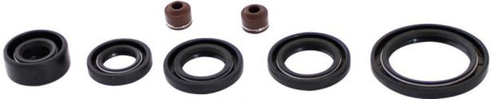 Oil_Seal_Kit_ _50cc_to_90cc_7pcs_1